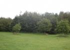 natuurkampeerterrein-deduiventoren-foto12