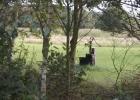 natuurkampeerterrein-deduiventoren-foto3